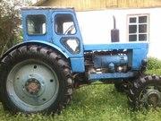 продам трактор Т 40 в отличном состоянии